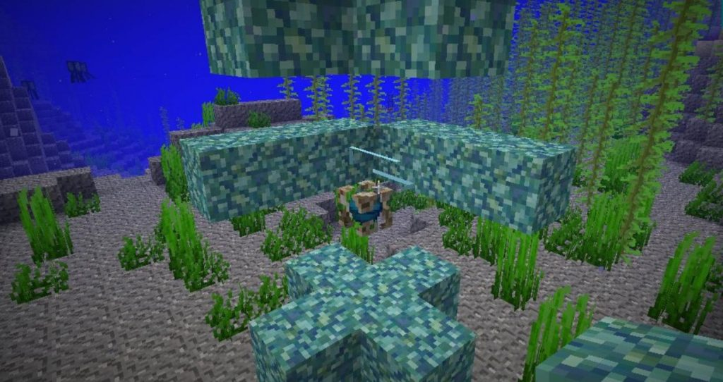 How to Make a Water Breathing Potion